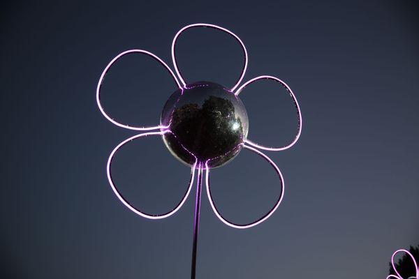 Fleur de lumière géante
