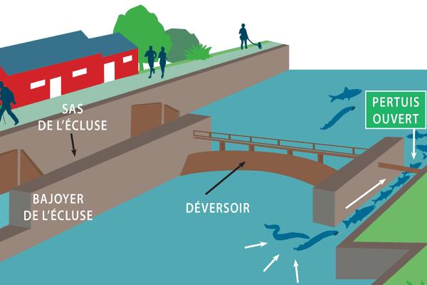 Passage (pertuis) pour les poissons remontant la rivière