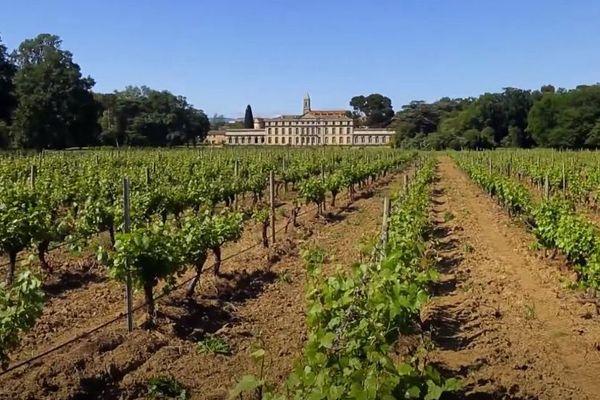 """Aude - le Château de Pennautier, le """"Versailles du Languedoc"""" et son vignoble- archives"""