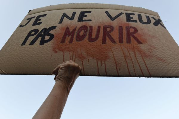 """2500 personnes, selon les organisateurs, ont défilé dans les rues de Toulouse, jeudi 3 octobre 2019, pour dire """"Stop au féminicides !""""."""
