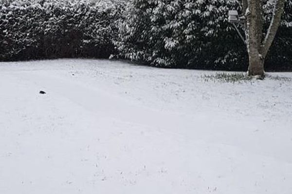 Neige à Couzeix le 22.01.2019