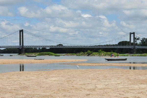L'oiseau et les baigneurs sur la plage de la Basse Meilleraie à Varades sur la rive nord de la Loire