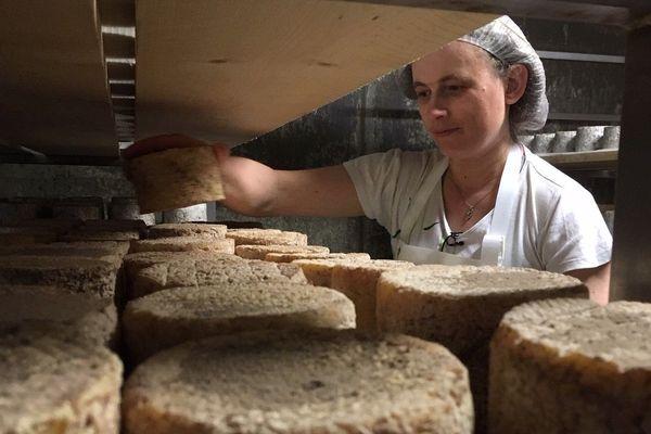 L'artisou est un fromage typique de la Haute-Loire.