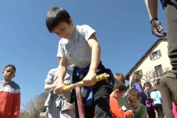 Des écoliers mendois, accompagnés par une association locale, plantent des pieds de vigne