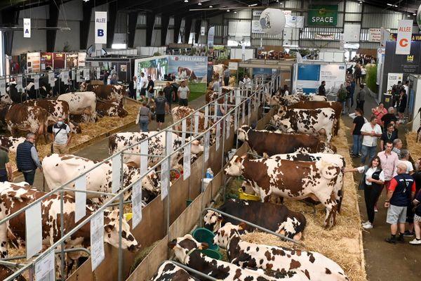 Le salon des Productions Animales (Space) de Rennes 2021 : parmi les inquiétudes des éleveurs, la baisse de consommation du lait bio.