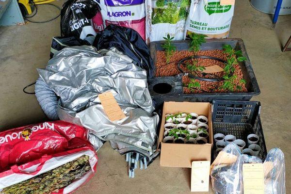 Les gendarmes de l'Ain ont saisi un peu plus d'un kilo d'herbe et des plants de cannabis.