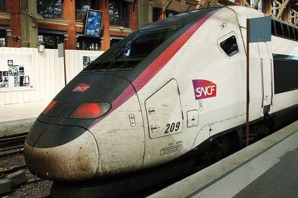 Au total, 40 postes sont à pourvoir à la SNCF, afin de répondre aux besoins de ressources croissants.