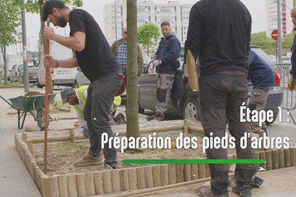 Première étape, préparer le bac avec de la terre végétale