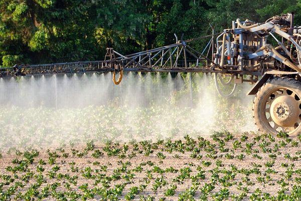 Paris, Lille, Nantes, Grenoble et Clermont-Ferrand interdisent maintenant l'utilisation des pesticides sur leurs territoires. Photo d'illustration.