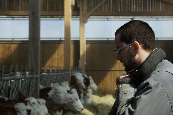 En immersion pendant plus de trois mois dans la ferme, le cinéaste montre les longues journées de travail du jeune agriculteur dans son exploitation du Puy-de-Dôme.