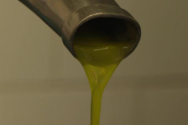 Avec plus de 800 tonnes par an, l'Hérault est le 2ème producteur d'huile d'olive en France après PACA.