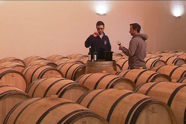 9000 bouteilles vont être étiquetées en vin rouge bio dans un premier temps