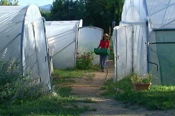 Jardin du cœur de Francheville- le 2 août 2013