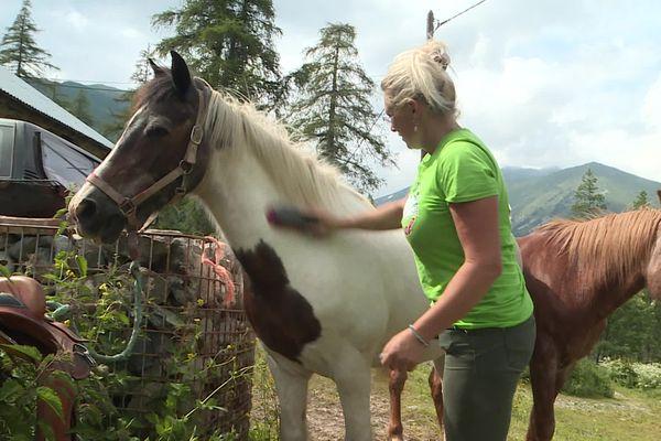 Julia propose habituellement à cette période de l'année des randonnées à cheval.