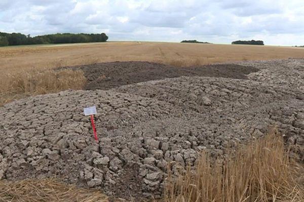 Des boues provenant d'une station d'épuration sont répandues dans les champs comme engrais.
