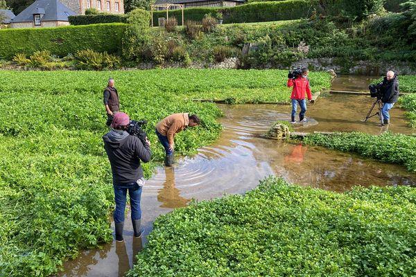 Veules-les-Roses: à la découverte du plus petit fleuve de France dans Vachement Normand !