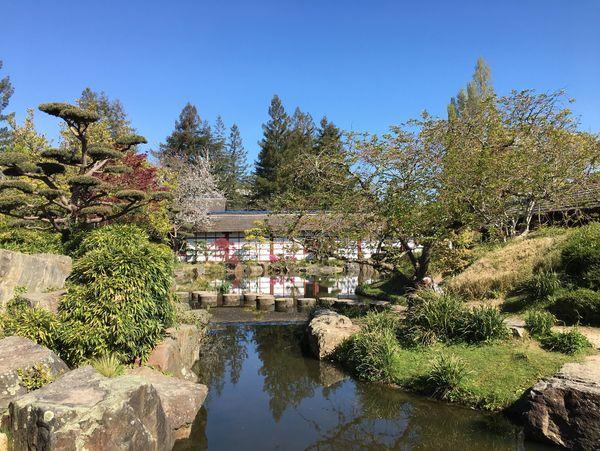 le jardin japonais est l'un des attractions majeures de l'Ile de Versailles
