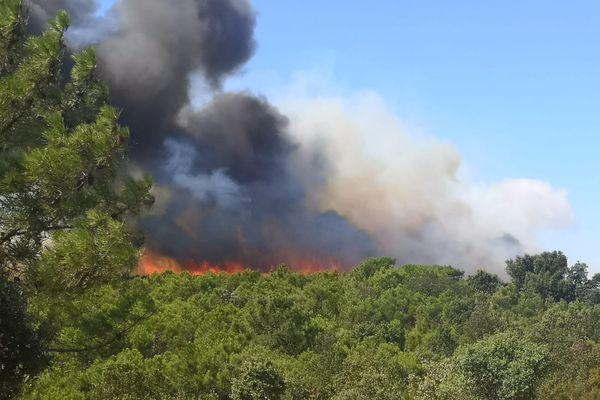 Aude - L'incendie à Bizanet mobilise près de 350 pompiers - 17 août 2021