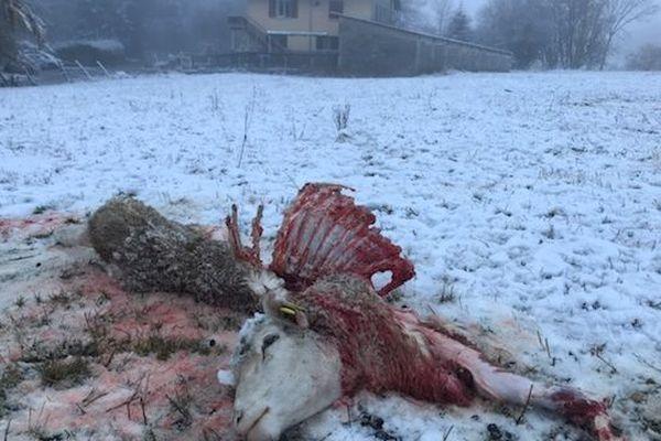 L'attaque s'est produite près des maisons dans ce hameau d'Ancelle.