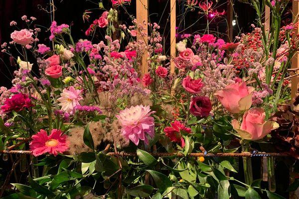 Un régal pour les yeux : ces créations florales attirent chaque année des milliers de visiteurs. Beaucoup reviennent d'une édition à l'autre.
