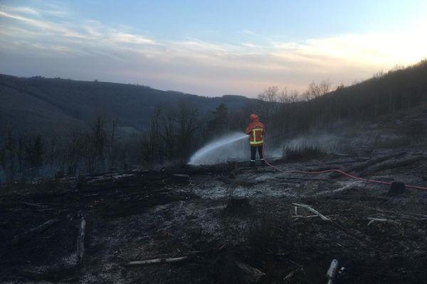 Malgré l'intervention d'une cinquantaine de pompiers, six hectares de forêt ont brûlé sur la commune de Lacaze dans le Tarn.