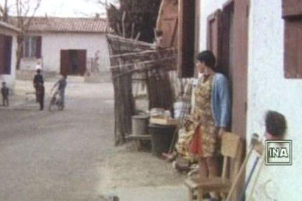 archives du camp de harkis de Saint-Maurice-l'Ardoise dans le Gard