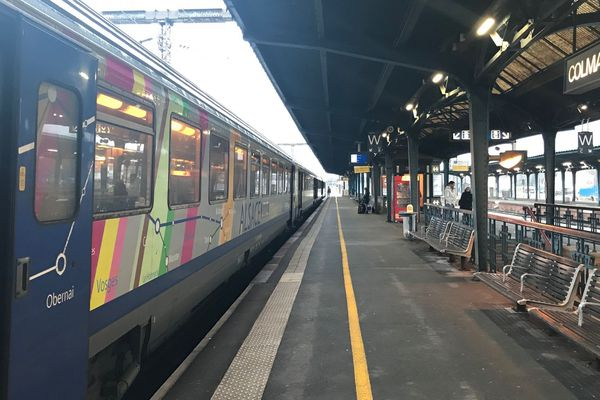 Le train a été contraint de s'arrêter en gare de Colmar pendant une quarantaine de minutes.
