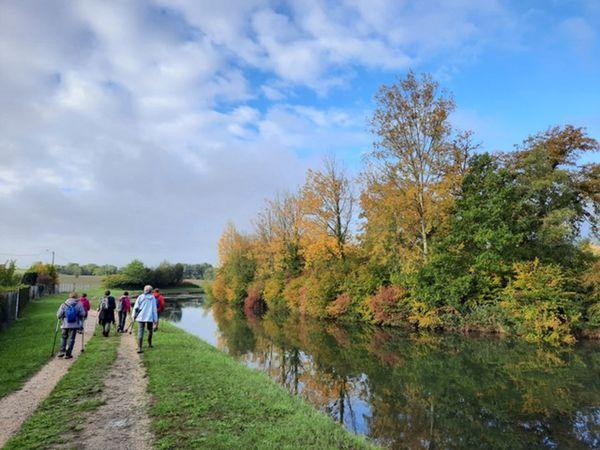 Le long de la Meuse où l'on peut croiser des castors d'Europe.