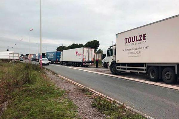 Bloqués par les gilets jaunes depuis dimanche soir à Narbonne, les camions des chauffeurs n'ont pas bougé d'un mètre et ne savent pas quand il pourront repartir.