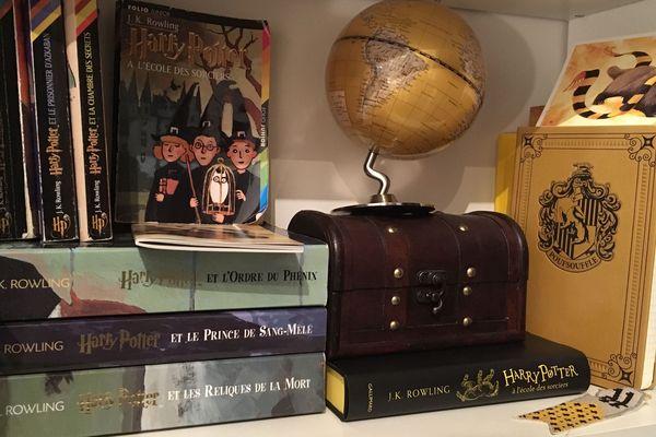 """Les """"Potterheads"""" (fans d'Harry Potter) ont constitué de sacrées bibliothèques et collections."""