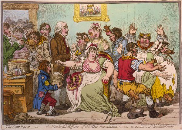 Caricature publiée en 1802 de Jenner vaccinant des patients qui craignaient qu'il leur fasse pousser des cornes de vaches.