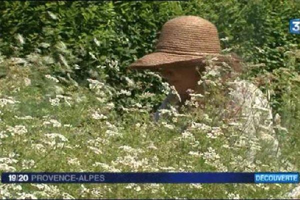 Rendez vous au jardins jusqu'à ce soir, dimanche 7 juin dans toute la France