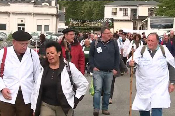les manifestants à Pau