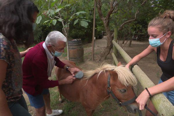 Les personnes fragilisées par la maladie d'Alzheimer retrouvent confiance au contact des animaux, c'est l'une des activités proposées par la structure d'accueil de jour Le grand platane à Perpignan - 21/09/2020