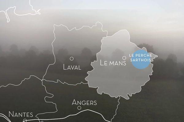 Escapade dans le Perche côté Sarthe