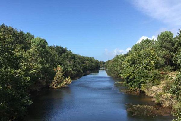 Canal entre les étangs du Médoc