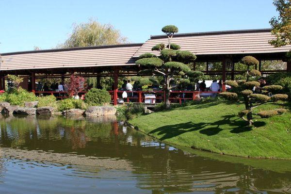 Le jardin japonais de l'île Versailles
