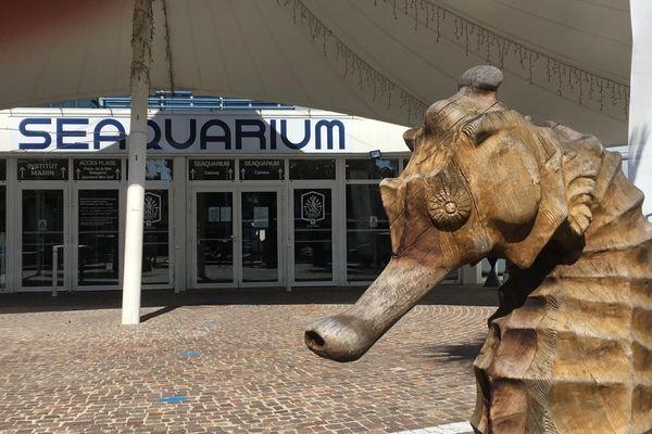 Le Seaquarium au Grau-du-Roi (Gard) est fermé depuis deux mois et demi