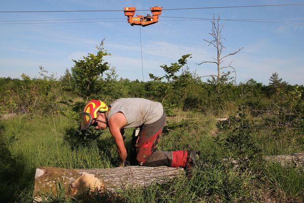 Le technicien va passer le câble sous le tronc puis actionner une poulie télécommandée qui ramènera le câble et l'arbre dans l'axe du câble principal