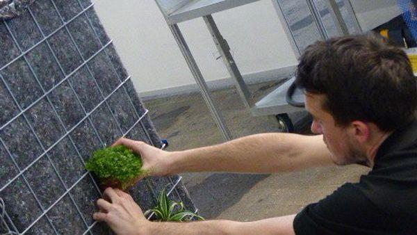 Atelier horticulture, la composition florale