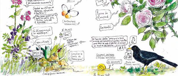 Dans son carnet, Fred Bernard a reporté ses observations : dessins, notes, et humour.