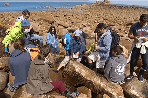 Les étudiants de la station biologique de Roscoff étudient la faune et la flore littoral pendant les grandes marées