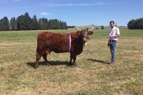 A 20 ans seulement, Martin Galvaing, agriculteur, se présente aux élections municipales de Saint-Etienne-de-Chomeil, dans le Cantal.