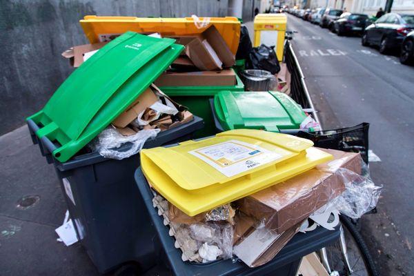 Des déchets collectés dans la rue