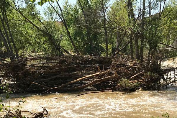 De nombreux arbres encombrent le lit de la rivière et constituent un risque en cas de nouvelle crue.