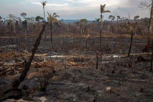 Les incendies détruisent l'Amazonie comme ici à  Novo Progresso, Para state, au Brésil, 25 août 2019.