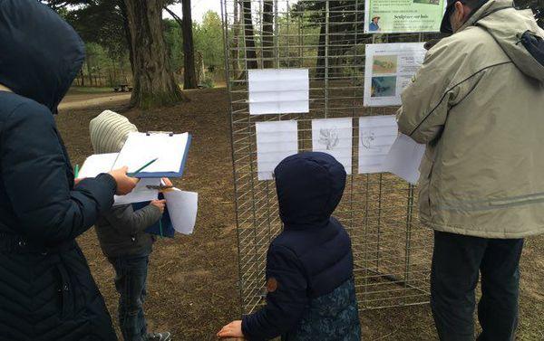 Les enfants étaient invités à observer et dessiner la forêt
