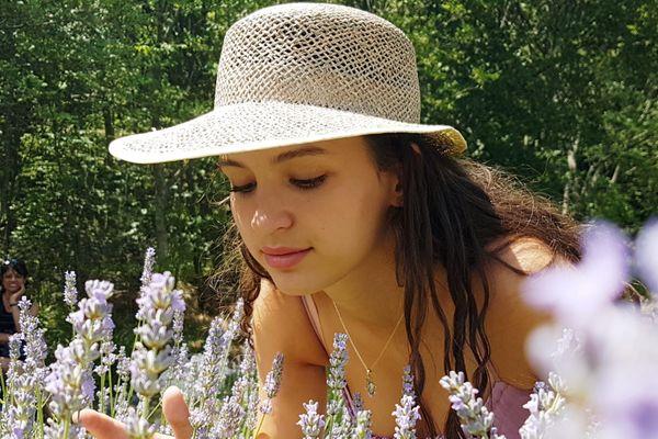 Une touriste en train de respirer l'odeur des lavandes présentes sur le parc.