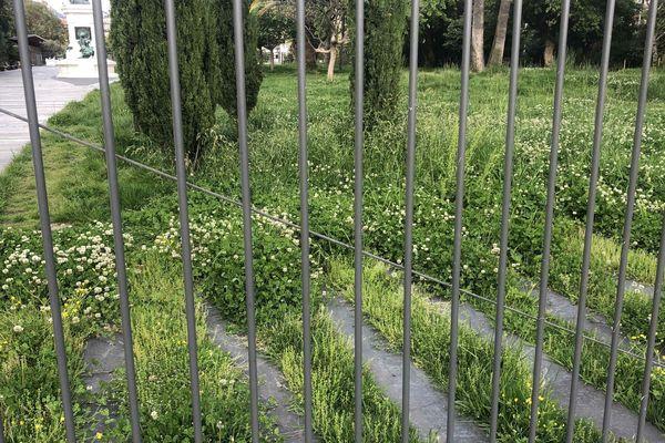 Protégées derrière les grilles les plantes nous le démontrent : être confiné peut avoir du bon !