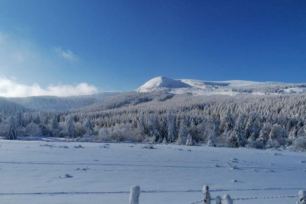 A Pessade, dans le Puy-de-Dôme, depuis quelques jours les températures sont fraîches.